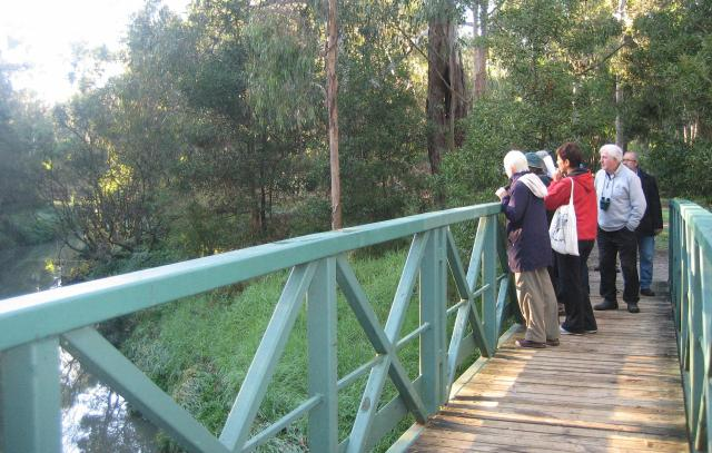 Bird counting group on Blacks Walk bridge