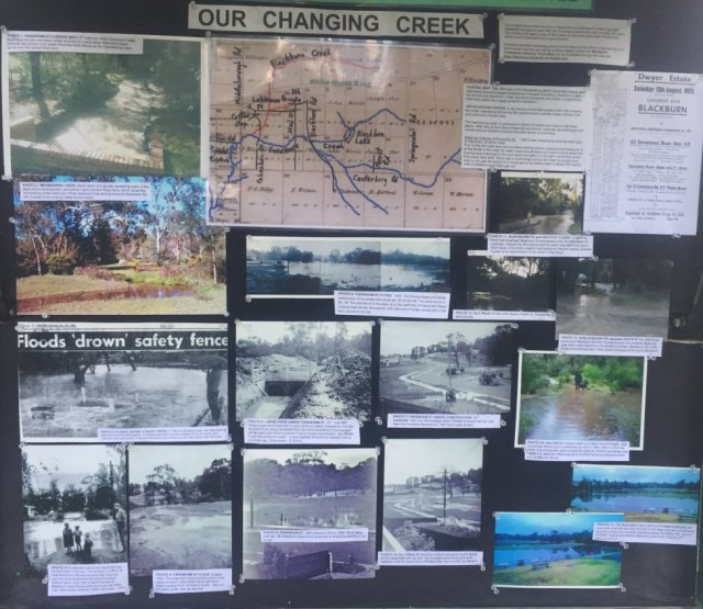 nb - our changing creek