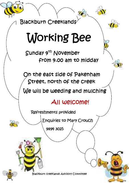 Working Bee 9 Nov 14 busy bees