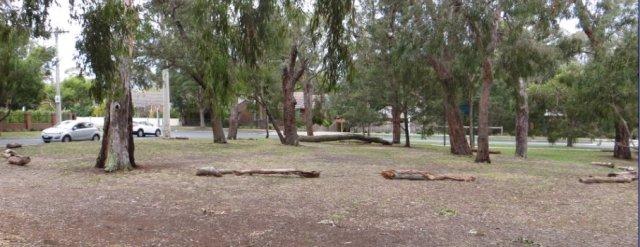 logs around regen area