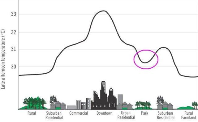 parks vs heat island effect