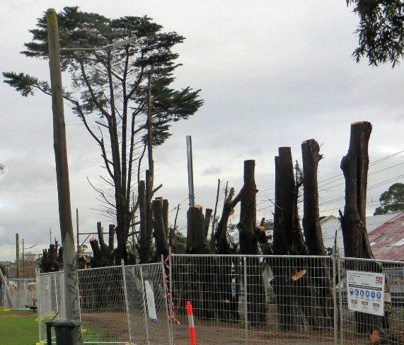 Morton Park destruction
