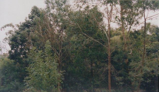 photopoint-16-2002