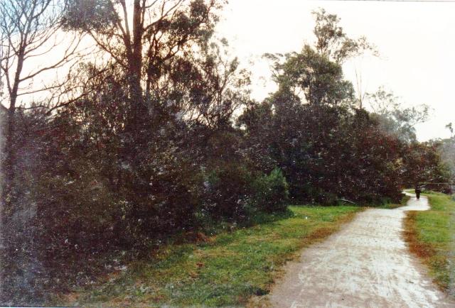 kalang-14-a-21-10-1990-adjusted-brightness